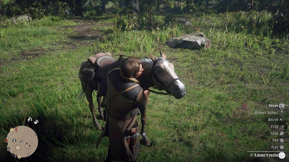 namen voor je paard