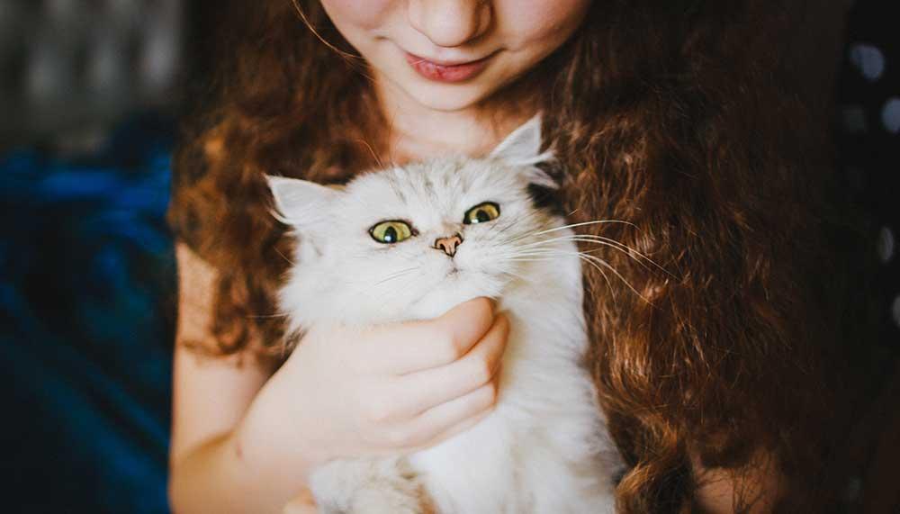 Mannen met katten zijn aantrekkelijker