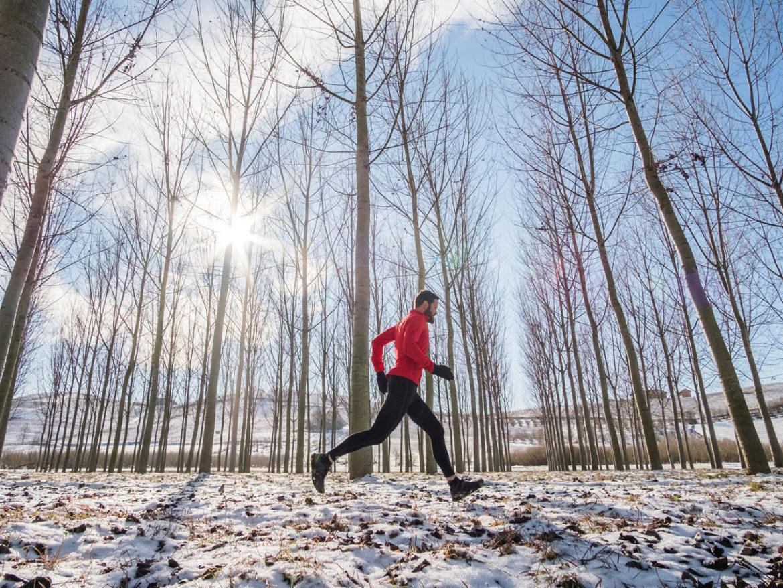 Sporten winter