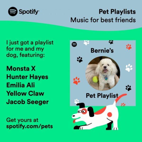 Persoonlijke playlist voor huisdieren