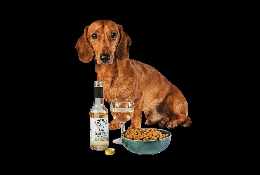 Honden en katten wijn van Aldi perfect voor de feestdagen