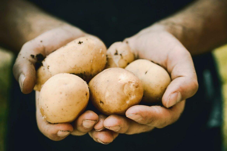 zak aardappelen schillen