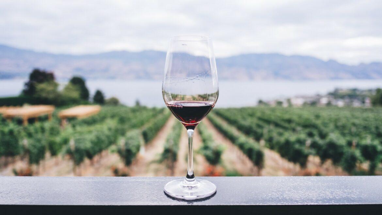 peperdure wijn